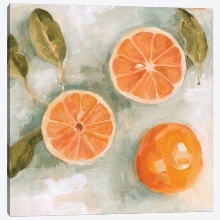 Fresh Citrus II Canvas Print #EMS231} by Emma Scarvey Canvas Art Print
