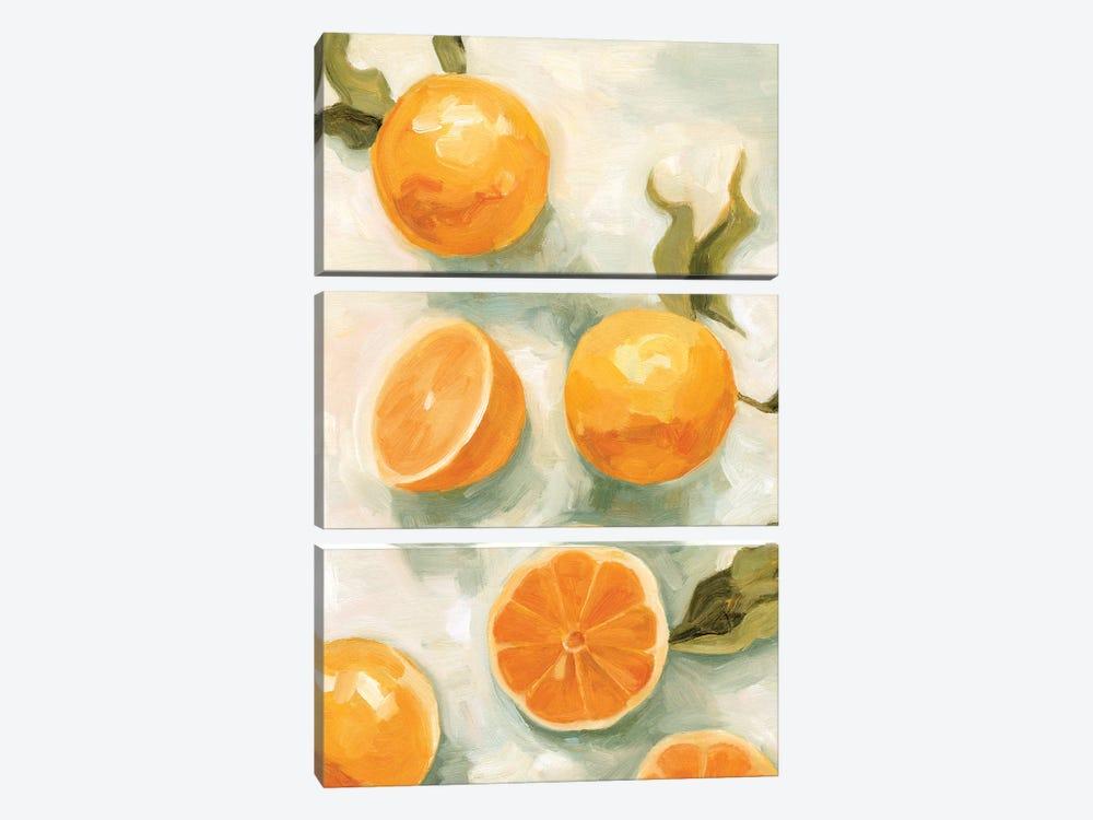 Fresh Citrus V by Emma Scarvey 3-piece Canvas Artwork