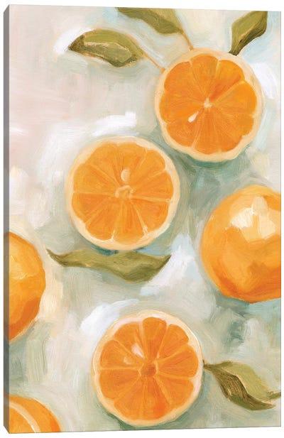 Fresh Citrus VI Canvas Art Print
