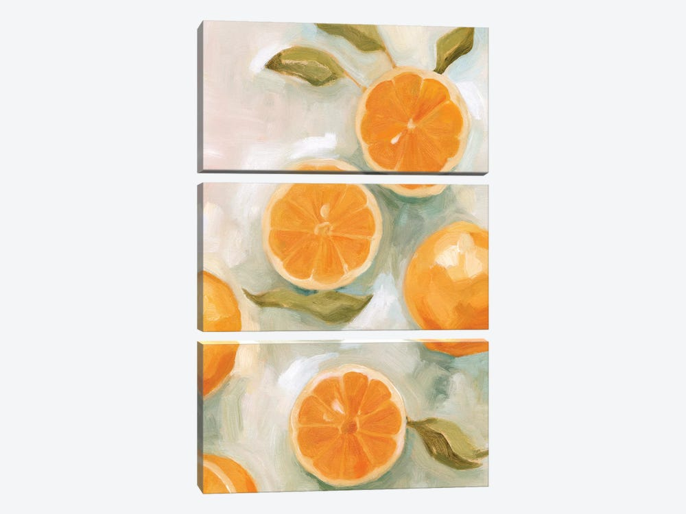Fresh Citrus VI by Emma Scarvey 3-piece Canvas Art Print