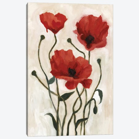 Poppy Bouquet I Canvas Print #EMS23} by Emma Scarvey Art Print