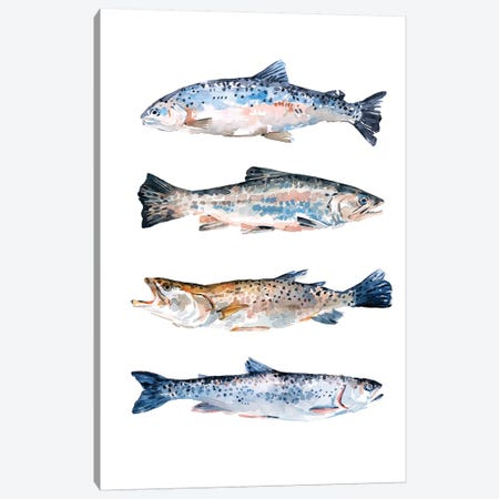Stacked Trout II Canvas Print #EMS255} by Emma Scarvey Canvas Artwork