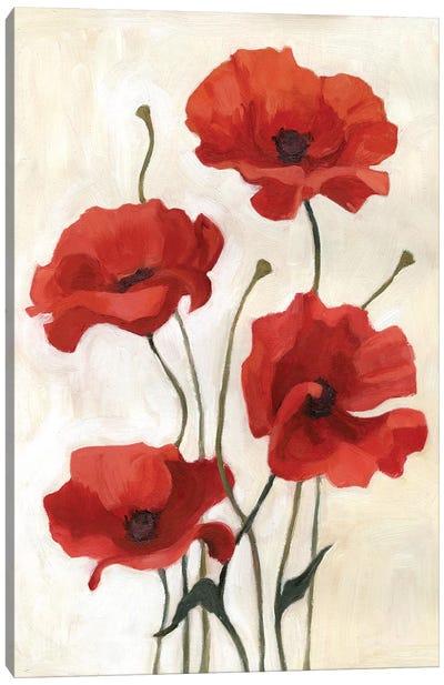 Poppy Bouquet III Canvas Art Print