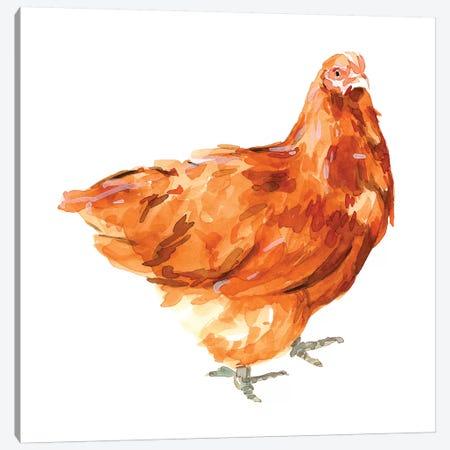 Wild Chicken I Canvas Print #EMS262} by Emma Scarvey Canvas Art
