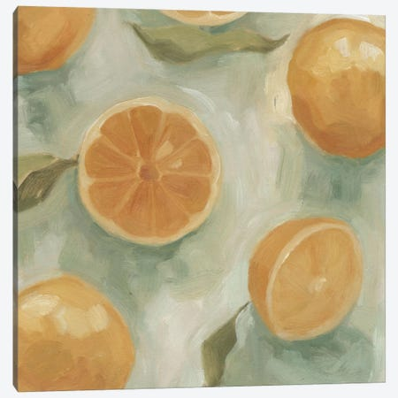 Citrus Study In Oil II Canvas Print #EMS2} by Emma Scarvey Canvas Art