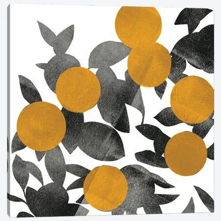 Shadow Branch II Canvas Print #EMS328} by Emma Scarvey Art Print