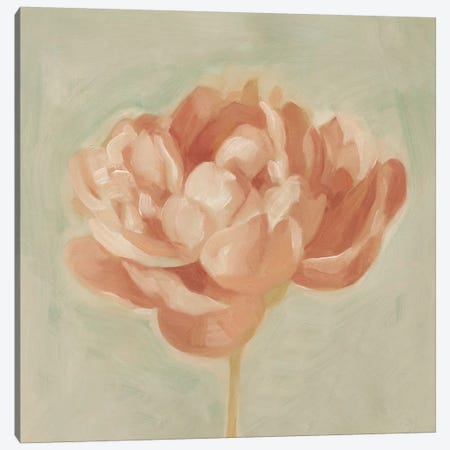 Spring Peony I Canvas Print #EMS32} by Emma Scarvey Canvas Wall Art