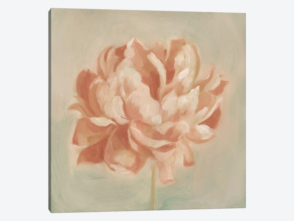 Spring Peony II by Emma Scarvey 1-piece Canvas Art