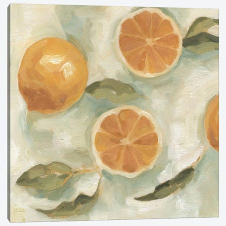 Citrus Study In Oil III Canvas Print #EMS3} by Emma Scarvey Canvas Artwork