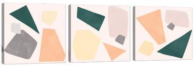 Curio Triptych Canvas Art Print