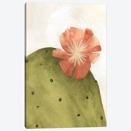 Arid Bloom II Canvas Print #EMS42} by Emma Scarvey Canvas Print