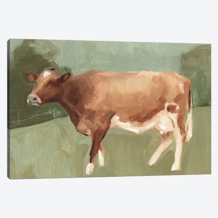 Bovine Field I Canvas Print #EMS43} by Emma Scarvey Canvas Art Print