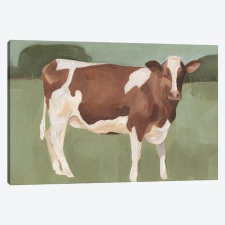 Bovine Field II Canvas Print #EMS44} by Emma Scarvey Canvas Artwork