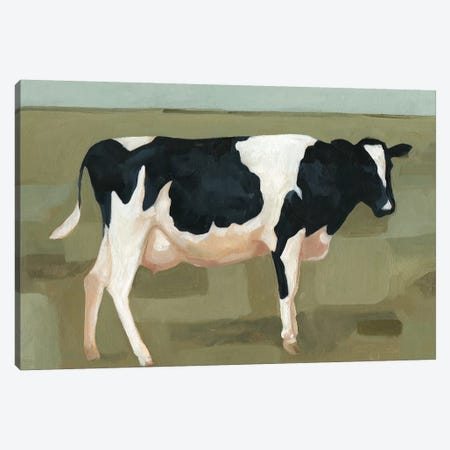 Bovine Portrait I Canvas Print #EMS45} by Emma Scarvey Canvas Art