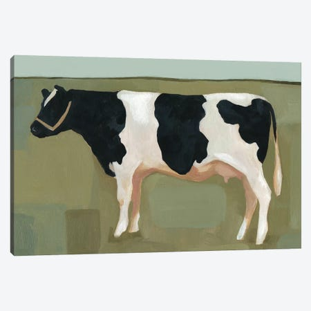 Bovine Portrait II Canvas Print #EMS46} by Emma Scarvey Canvas Art
