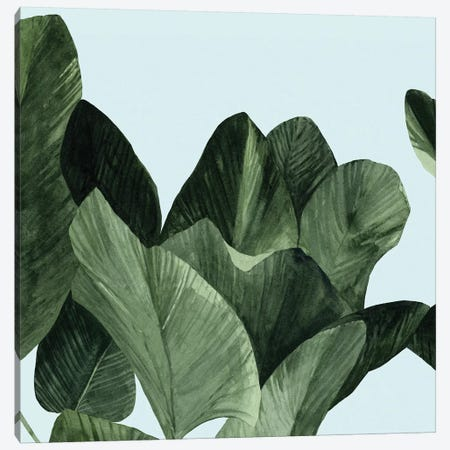 Celadon Palms I Canvas Print #EMS49} by Emma Scarvey Canvas Art Print