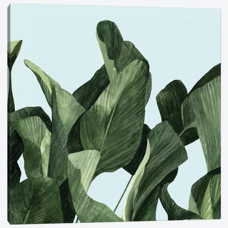 Celadon Palms II Canvas Print #EMS50} by Emma Scarvey Canvas Wall Art