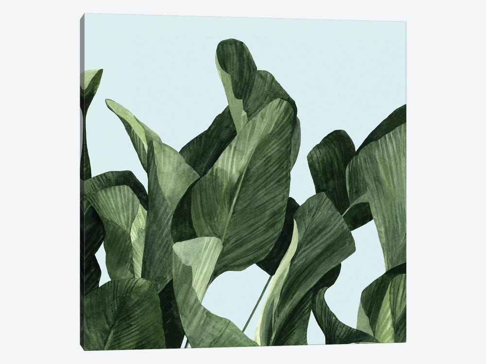 Celadon Palms II by Emma Scarvey 1-piece Canvas Print