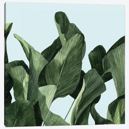 Celadon Palms II Canvas Print #EMS50} by Emma Scarvey Canvas Wall Art