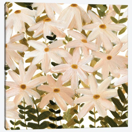 Daisy Field I Canvas Print #EMS53} by Emma Scarvey Canvas Artwork
