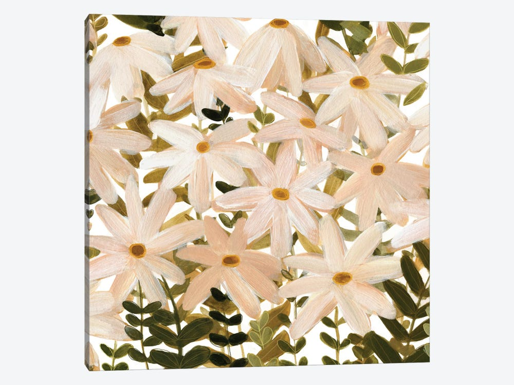 Daisy Field I by Emma Scarvey 1-piece Canvas Art