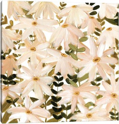 Daisy Field II Canvas Art Print