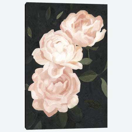 Nighttime Flora III Canvas Print #EMS69} by Emma Scarvey Canvas Art Print