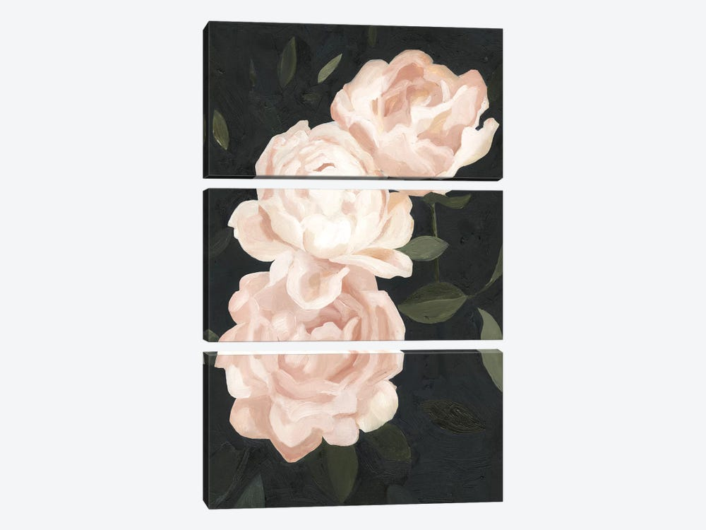 Nighttime Flora III by Emma Scarvey 3-piece Art Print