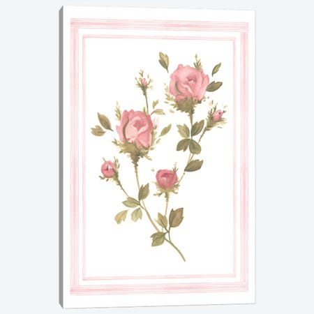 Rose Pattern I Canvas Print #EMS78} by Emma Scarvey Canvas Art