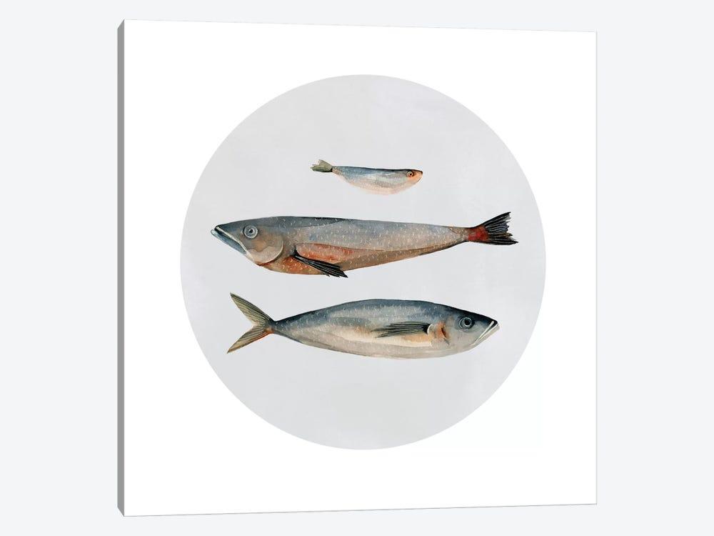 Three Fish II by Emma Scarvey 1-piece Art Print