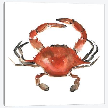 Watercolor Crab I Canvas Print #EMS90} by Emma Scarvey Canvas Artwork