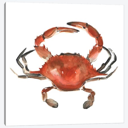 Watercolor Crab I Canvas Print #EMS90} by Emma Scarvey Canvas Artwork