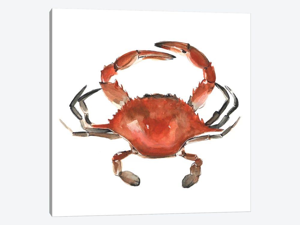 Watercolor Crab I by Emma Scarvey 1-piece Canvas Print