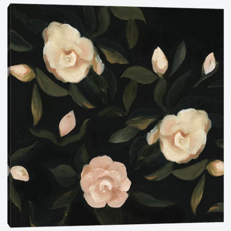Evening Gardenias I Canvas Print #EMS9} by Emma Scarvey Canvas Artwork