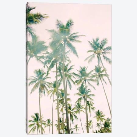 Palm Island Canvas Print #ENA101} by Emily Navas Canvas Print