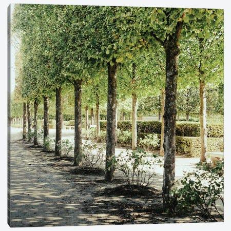 Parisian Stroll I Canvas Print #ENA103} by Emily Navas Canvas Art Print