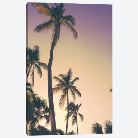 Evening Palms Canvas Print #ENA12} by Emily Navas Canvas Art