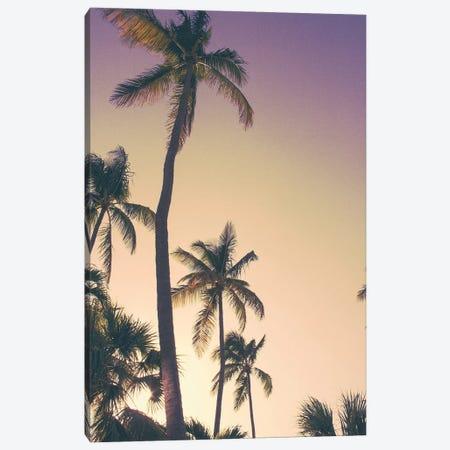 Evening Palms Canvas Print #ENA12} by Emily Navas Canvas Art
