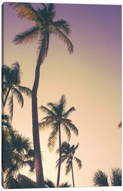 Evening Palms Canvas Art Print