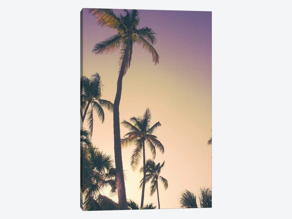 Evening Palms by Emily Navas 1-piece Canvas Art Print
