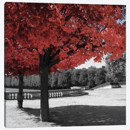 Garden Walk Canvas Print #ENA14} by Emily Navas Canvas Print