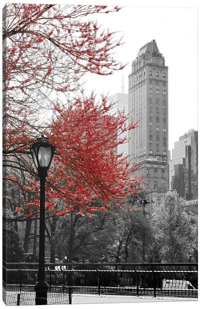 Central Park with Red Tree Canvas Art Print
