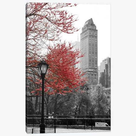Central Park with Red Tree Canvas Print #ENA5} by Emily Navas Canvas Print