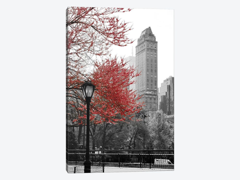 Central Park with Red Tree by Emily Navas 1-piece Canvas Wall Art