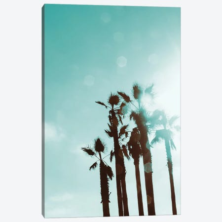 Palms In The Sun Canvas Print #ENA61} by Emily Navas Canvas Print