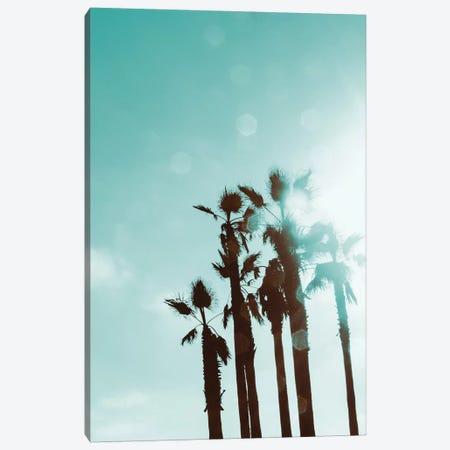 Palms In The Sun Canvas Print #ENA61} by Emily Navas Canvas Print