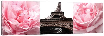 Pink Roses Eiffel Tower Canvas Art Print