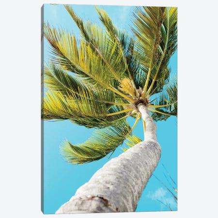 Tropical Winds Canvas Print #ENA72} by Emily Navas Canvas Art