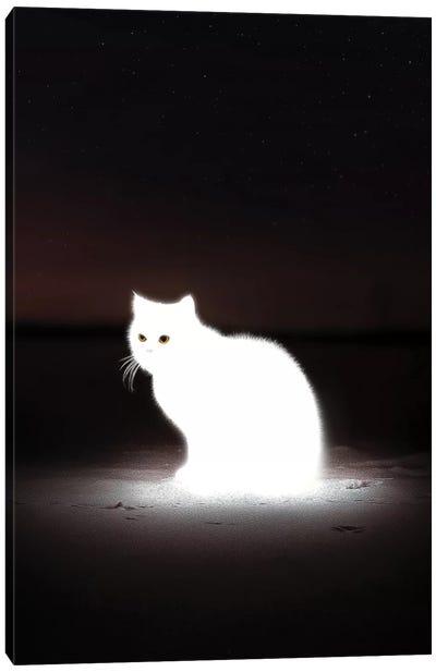 Glowing Cat Canvas Art Print
