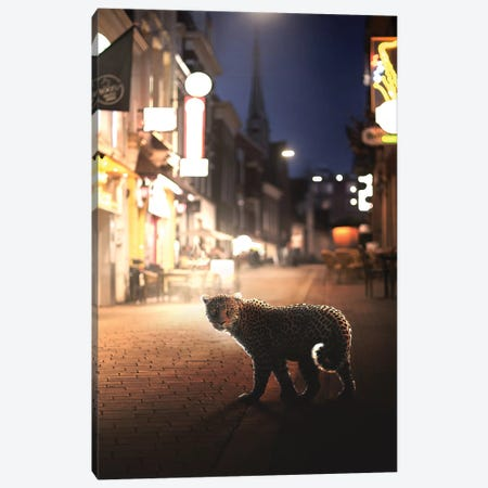 Nightlife Canvas Print #ENP19} by en.ps Canvas Art Print